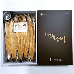 선물용황태 특대 (47~49cm)10미